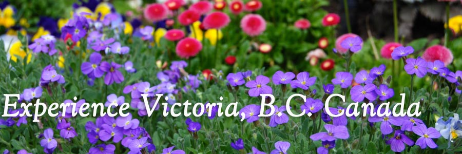 Experience Victoria!